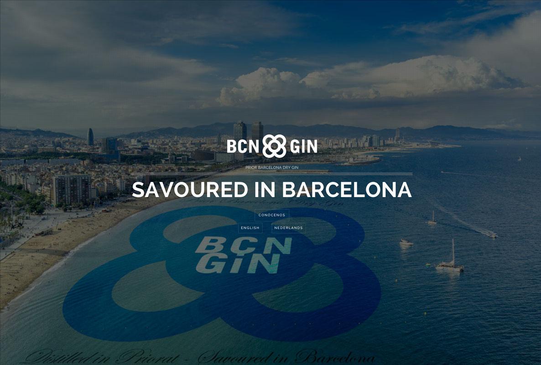 BCN GIN web
